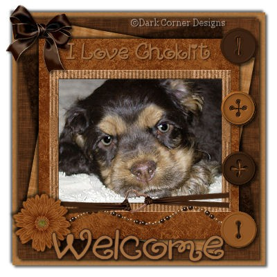 dcd-Welcome-Love Choklit