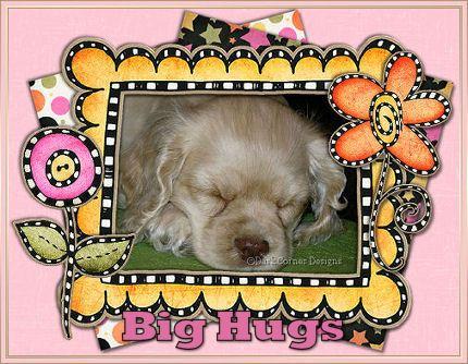dcd-Big Hugs-Audree