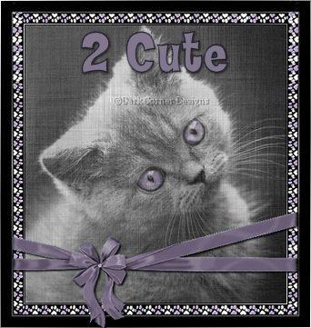 dcd-2 Cute-Kitty-Rush