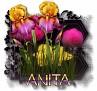 Anita - 3094