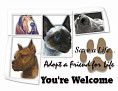 dcd-You're Welcome-Adopt a Friend-MC.jpg