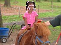 Birthday Party Pony Rides