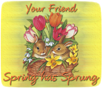 Your Friend-gailz-bunnies and tulips