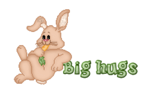 Big hugs - BunnyWithCarrot