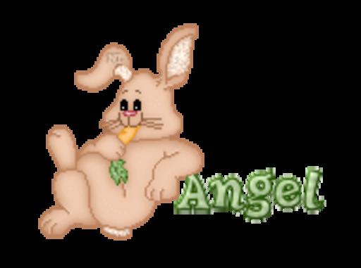 Angel - BunnyWithCarrot