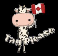 Tag Please - CanadaDayCow