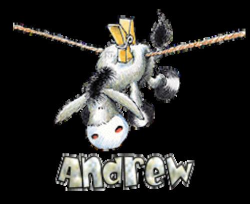 Andrew - DunkeyOnline