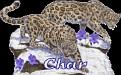 Char Big Cats2