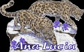 Ana Lucia Big Cats2