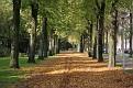 Autumn Eindhoven (9)