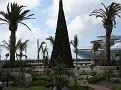 Cozumel - Shopping Area 9