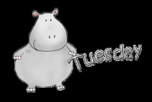 DOTW Tuesday - CuteHippo2018