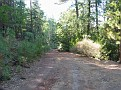 The dirt road to the site