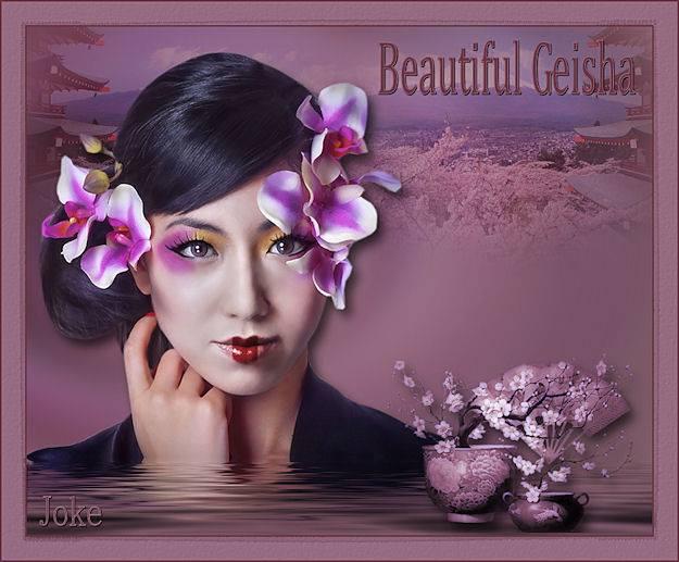Les 633 Beautiful Geisha