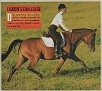 AASTRAKHAN #470154 (Muftir Ibn Al Malik x Courtney, by Safire++) 1991 bay mare2
