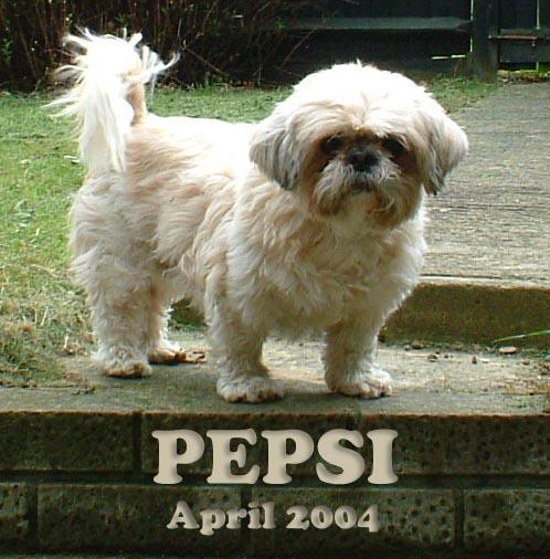 April 2004 003b copy