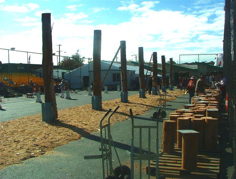 Wood Chop Arena