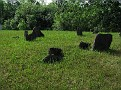 Graves of unknown labourers