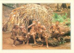 Central African Rep - Traditional Family PE