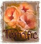 1Terrific-peachfloral