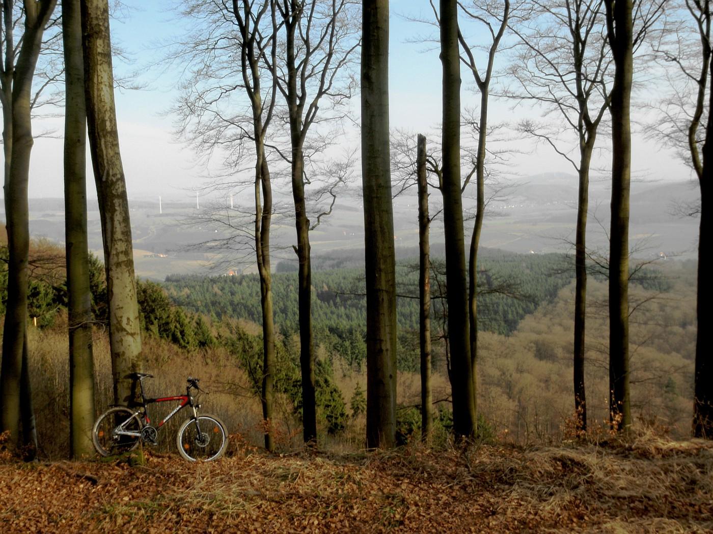 Blick von der Herlingsburg