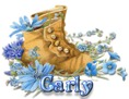 Carly - BootsNBlueFlowers