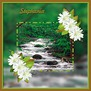Stephania-gailz-babbling brook