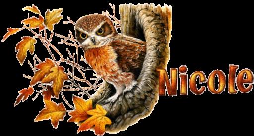 Nicole - oie 1gRDyePE3NsI-Dena