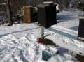 This one is a VIDEO!!! Honey Bees Surviving the Winter of 2010