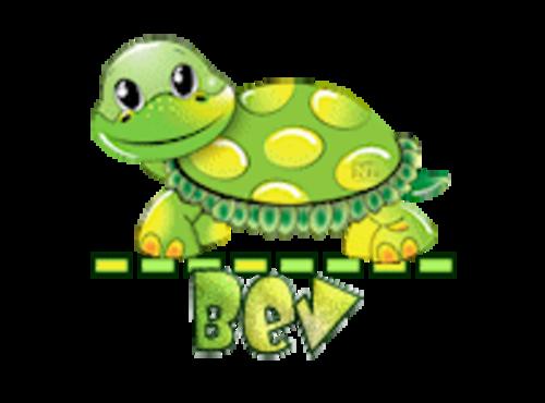 Bev - CuteTurtle